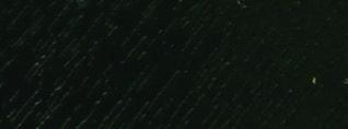 verde muschio dec006